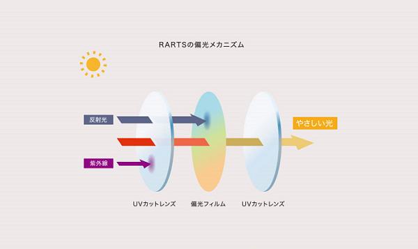 RARTSの偏光メカニズム